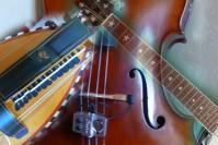 Nos amis musiciens